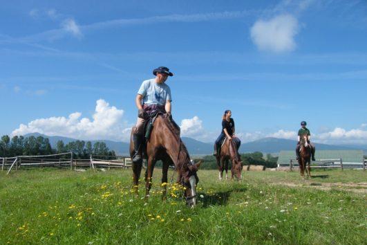 horse riding portfolio 4